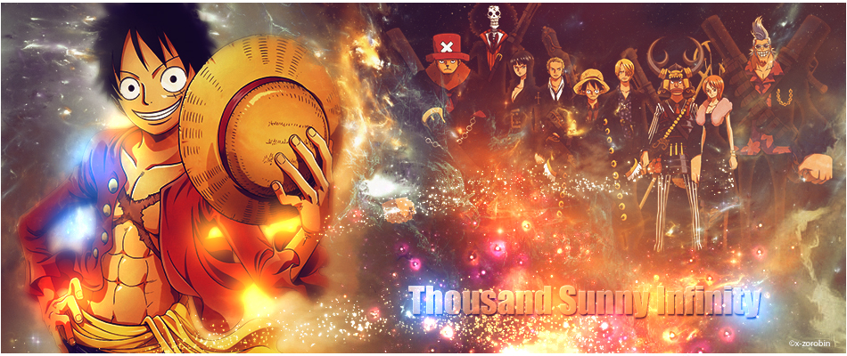 Thousand Sunny Infinity