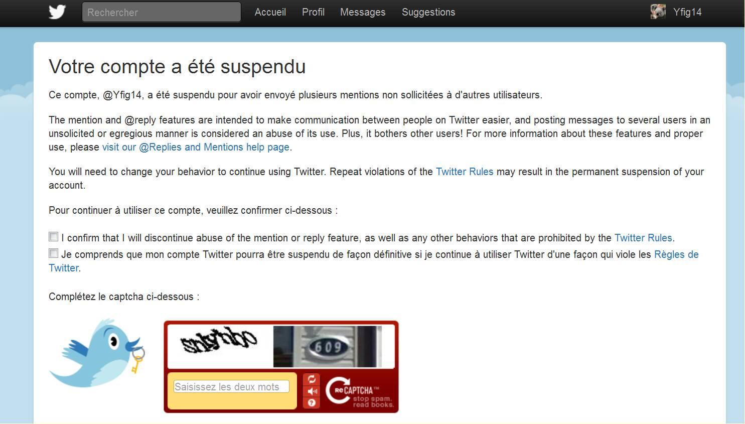 tweeter-suspendu01-406f449.jpg