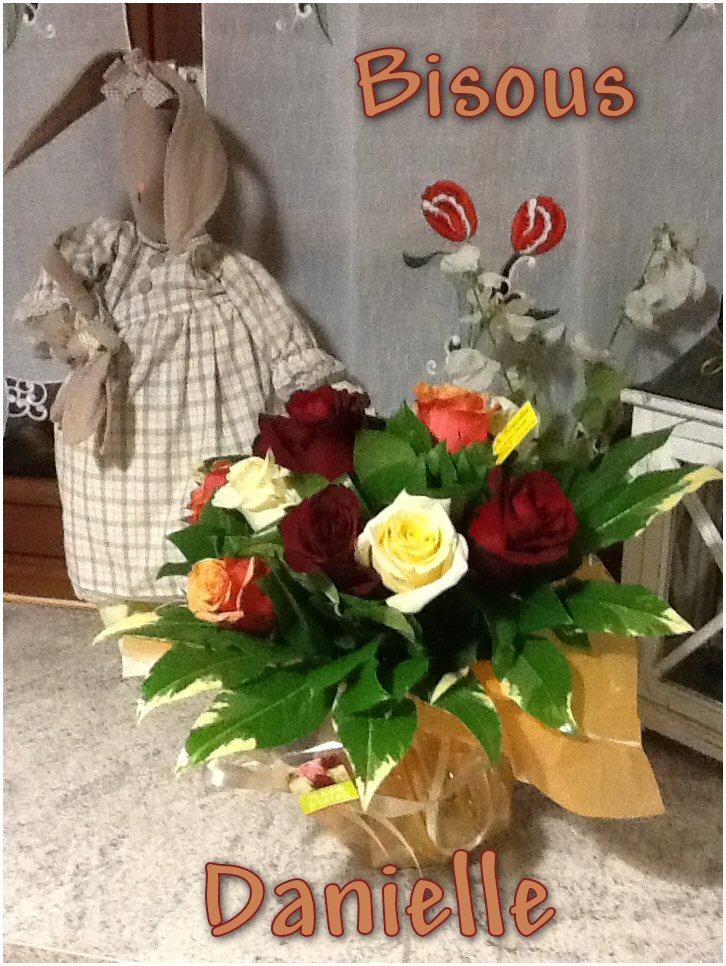 Bon LUNDI 25/11 ! Fleurs-nath-42584a2