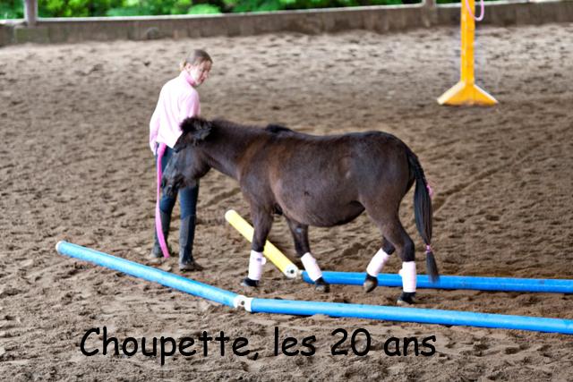 8 ans d'équitation..♥ - Page 7 _mg_5723-copie-3e26b2c