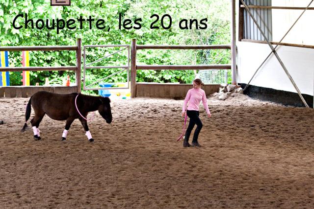 8 ans d'équitation..♥ - Page 7 _mg_5724-copie-3e26b3f