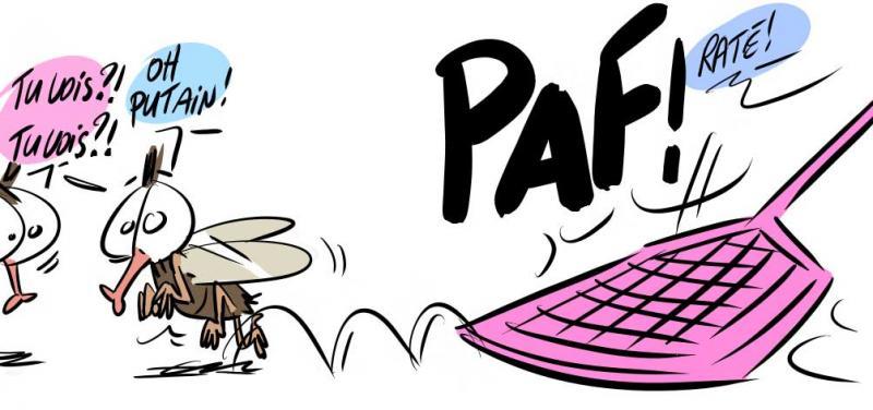 Compil .... les mouches par M64  23 novembre 2013 Mouches-2-425cabb
