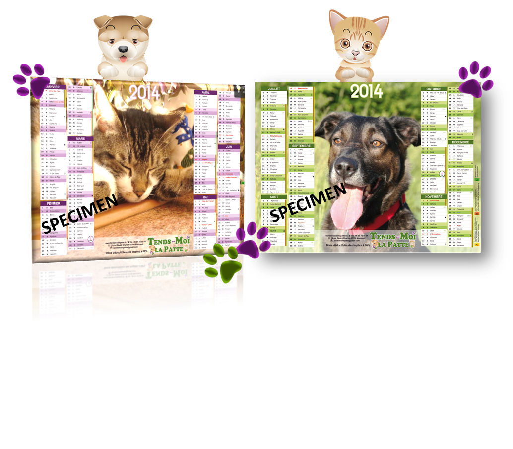 Calendrier2014facechat