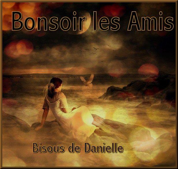 Bon LUNDI SOIR 25/11 Danielle-bonsoir-26-octobre-41b9017